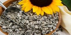 Tarihi Eminonu - Sunflower Seed - Salty